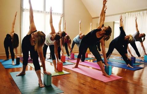 BA in Yoga